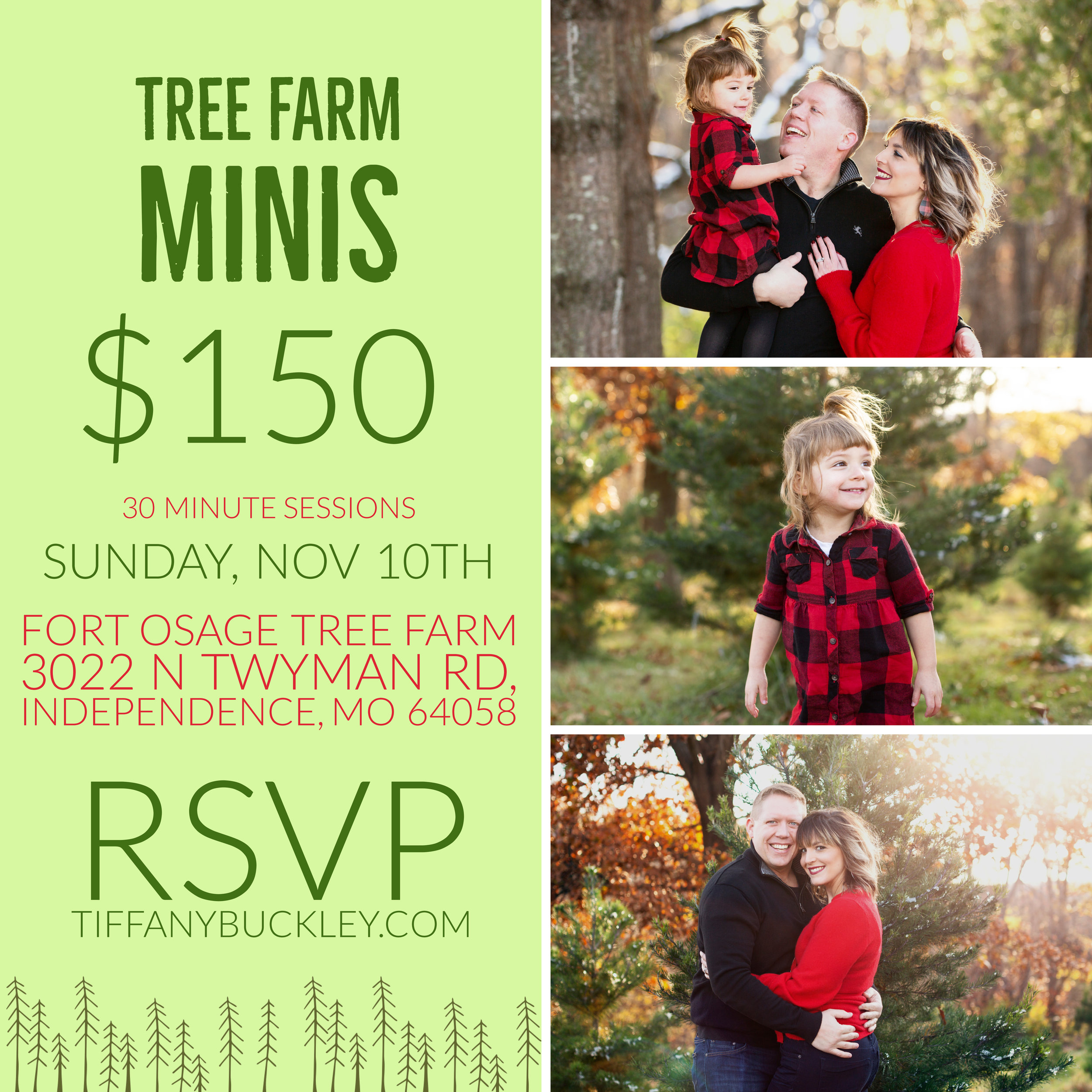 family photos tree farm minis