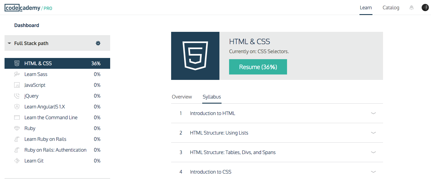 Codecademy's Full Stack Path, available to Codecademy Pro users