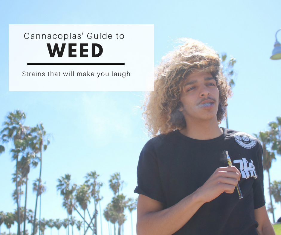 laughing weed.png