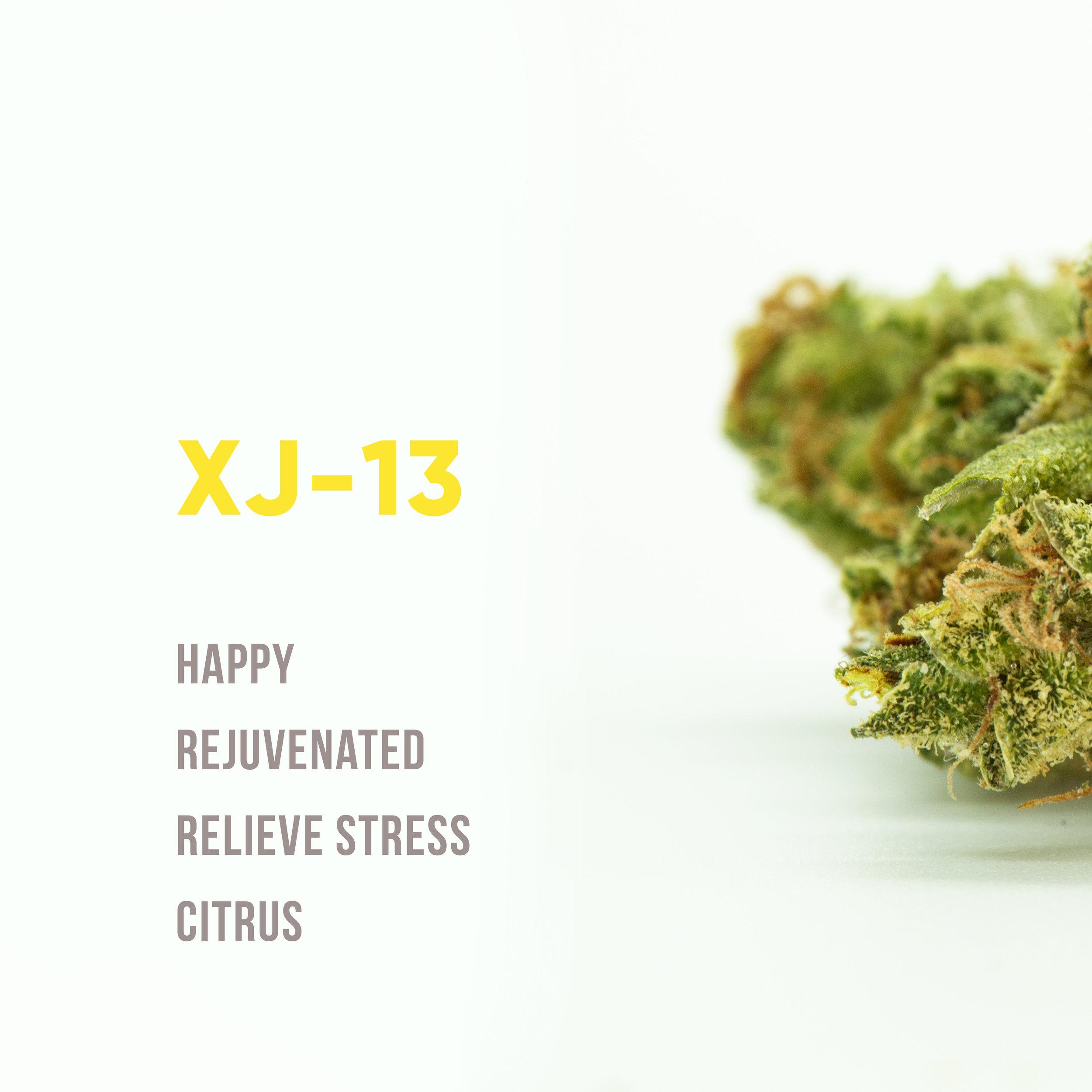 XJ1text.jpg