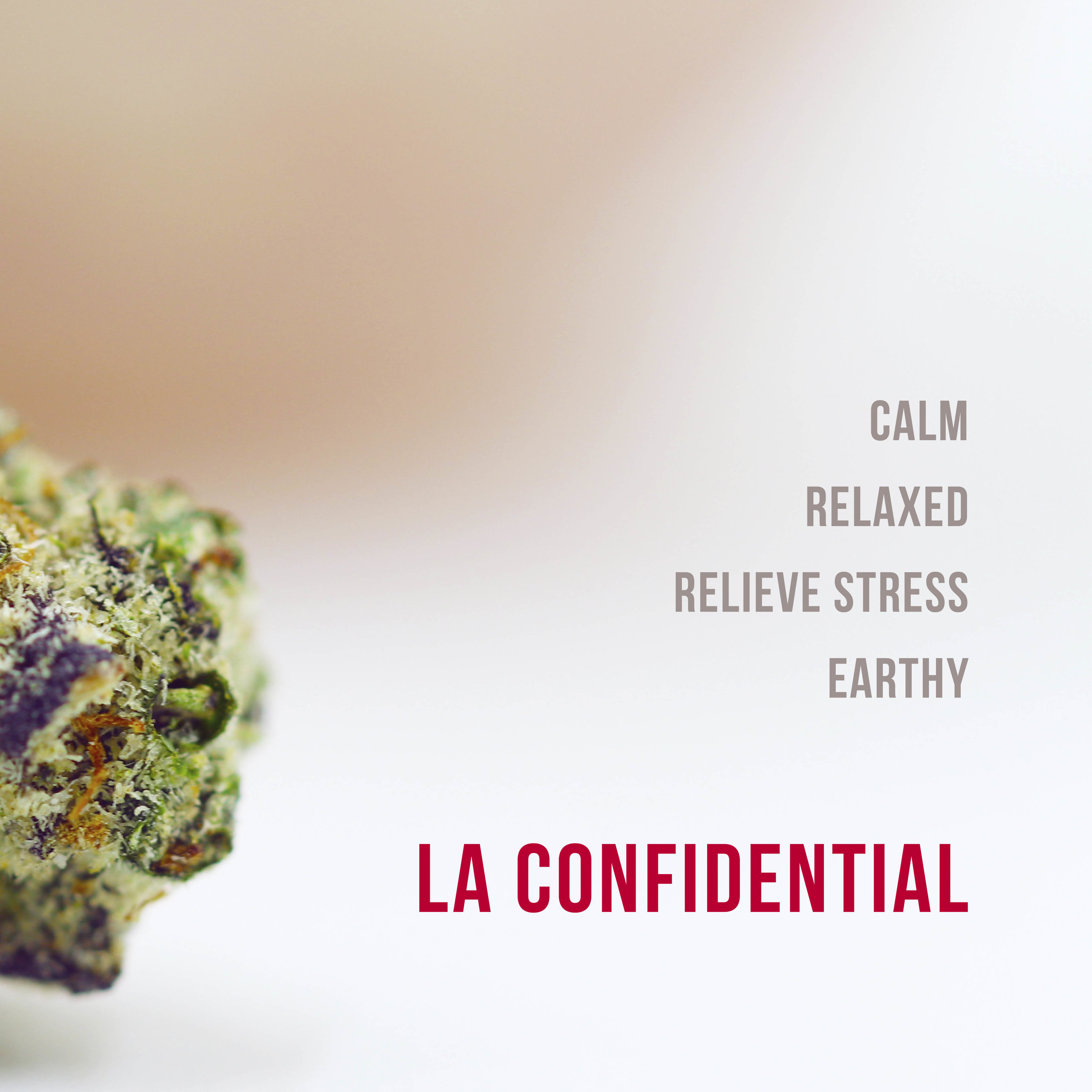 La confidential new.jpg