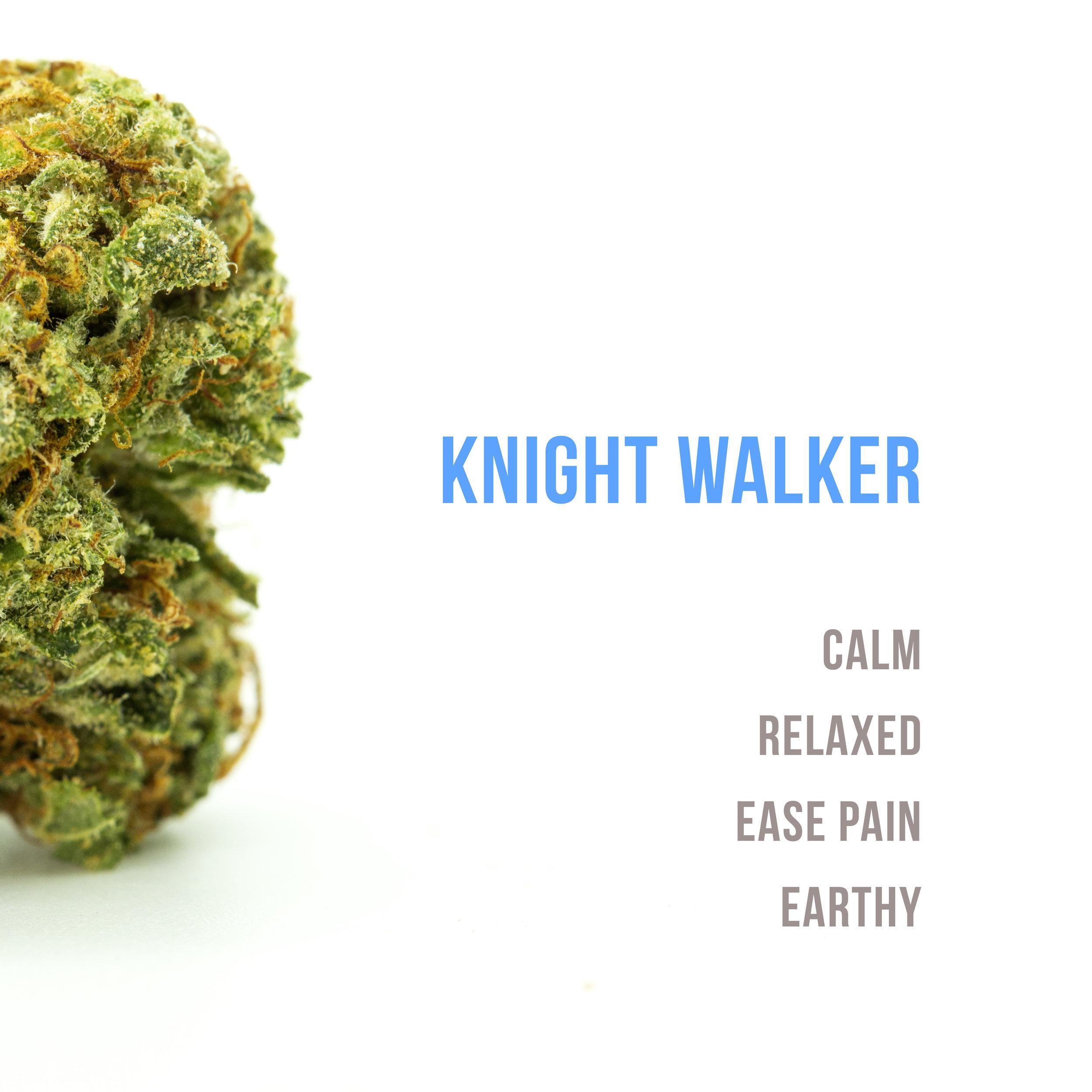 knightwalkertext.jpg