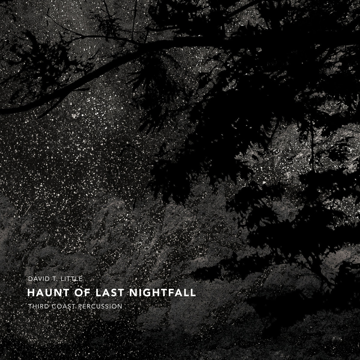David T. Little:  HAUNT OF LAST NIGHTFALL  (2014) mix engineer