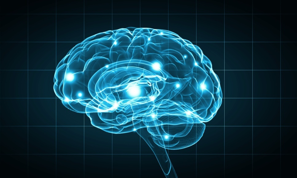 Concept of human intelligence with human brain on blue background.jpeg