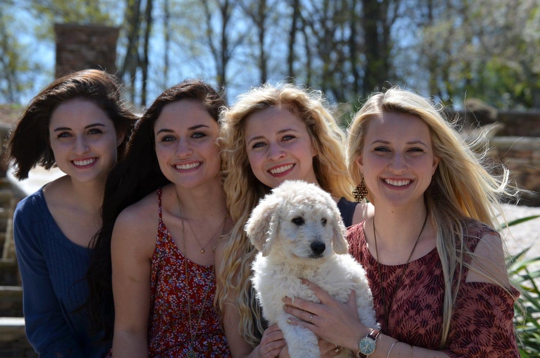 Family raised puppy