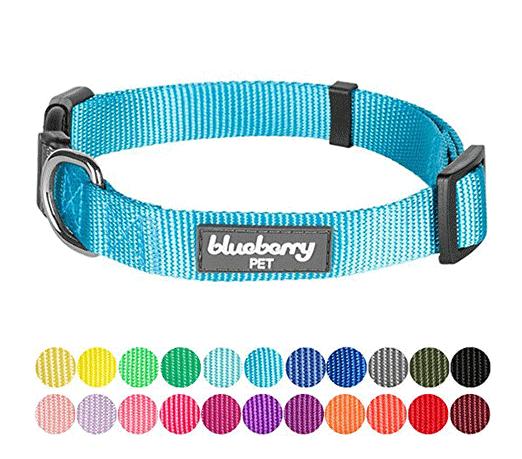 dog-collars.png