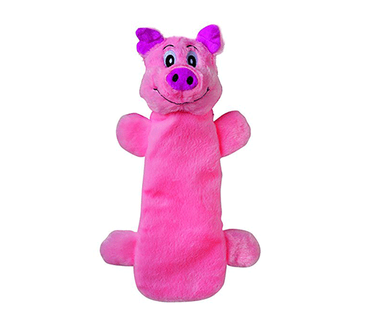 dog-bottle-toy.png