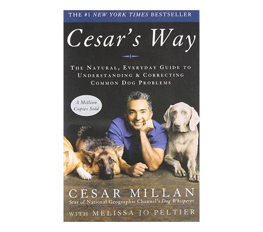 cesars-way-dog-book.png