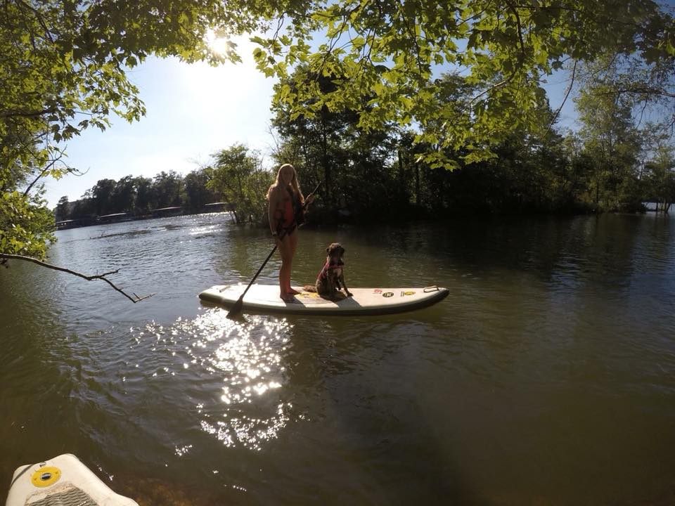 Paddle boarding and swimming! - Brittany Francart