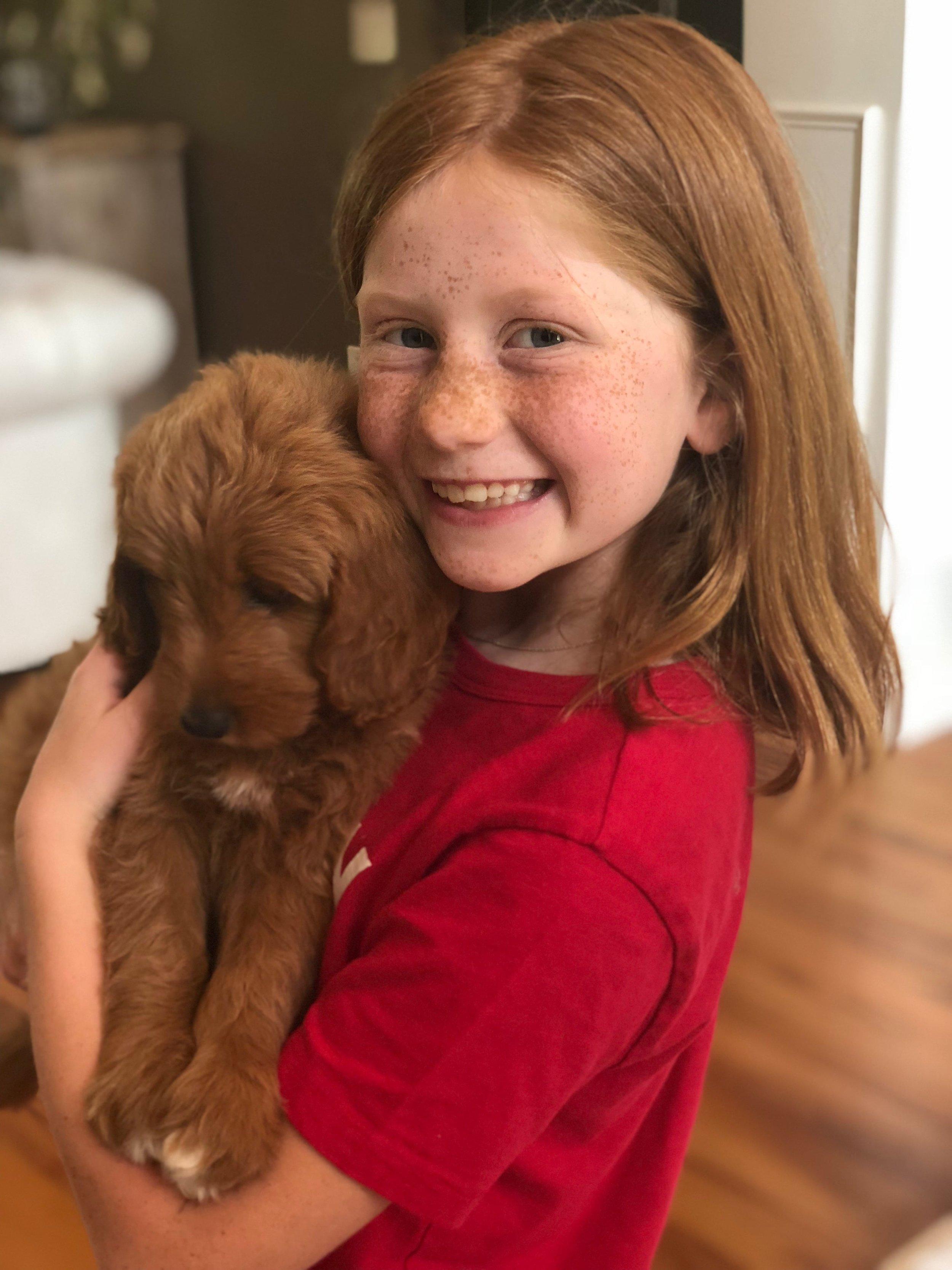 matching-doodle-puppy-min.jpg