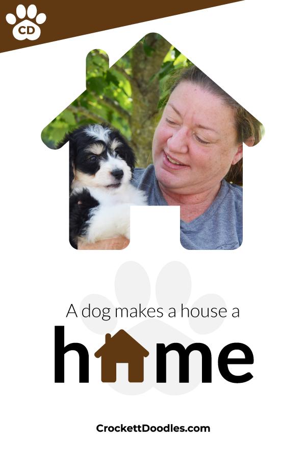 dog-makes-a-house-a-home.jpg
