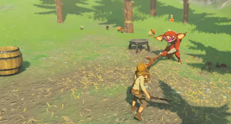 legend-of-zelda-botw-combat.jpg