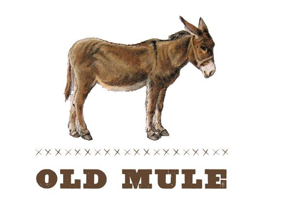 Come on out to the pub for some sweet rock, country, folk and blues tunes, courtesy of Old Mule!