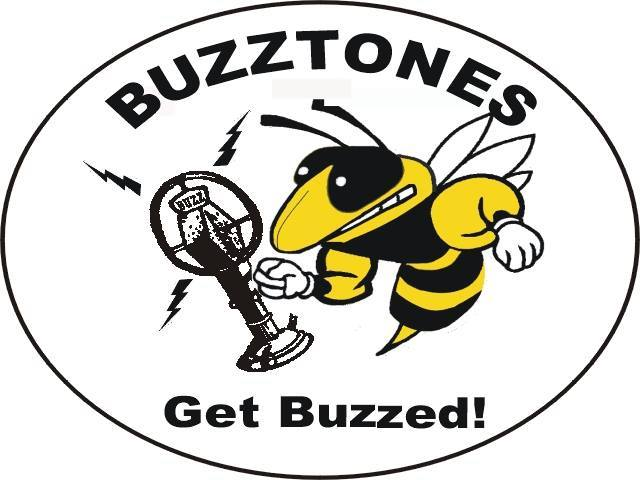 The Buzztones - Classic Rock, Blues, Modern Country and more! Featuring Bob Burton (Guitar) Jeff Balasa (Guitar) Steve Pudarich (Bass) Jim Hart (Drums)