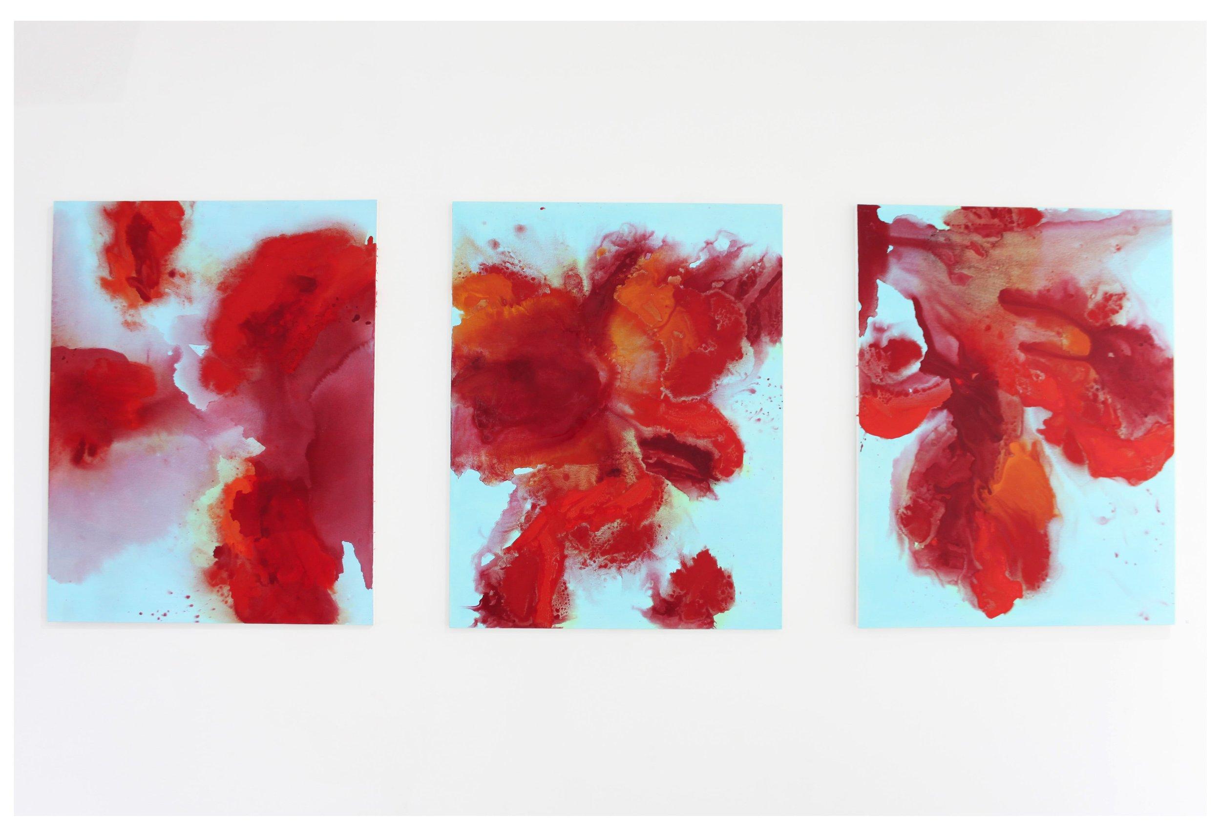 Outburst (Triptych)  2012, 105 x 405cm acrylic on canvas