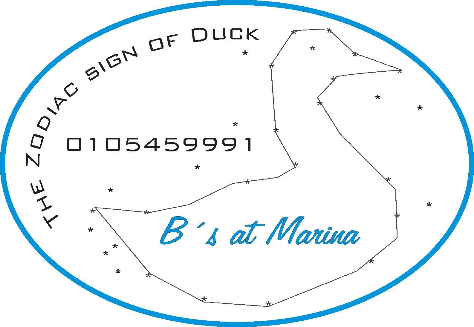 zodiac_sign_of_duck.jpg