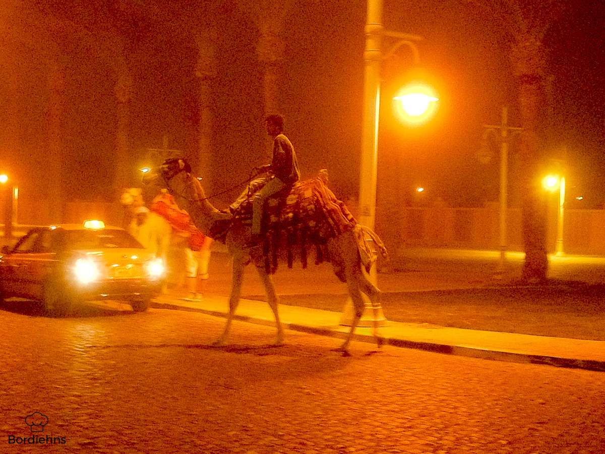 Egypt pics-4.jpg