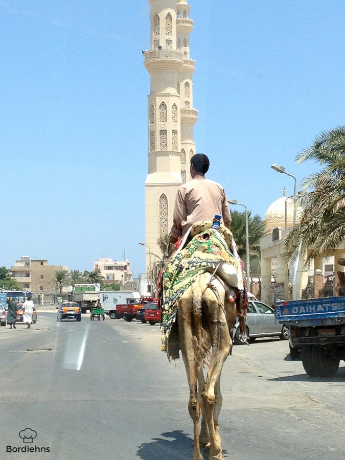 Egypt pics-5.jpg