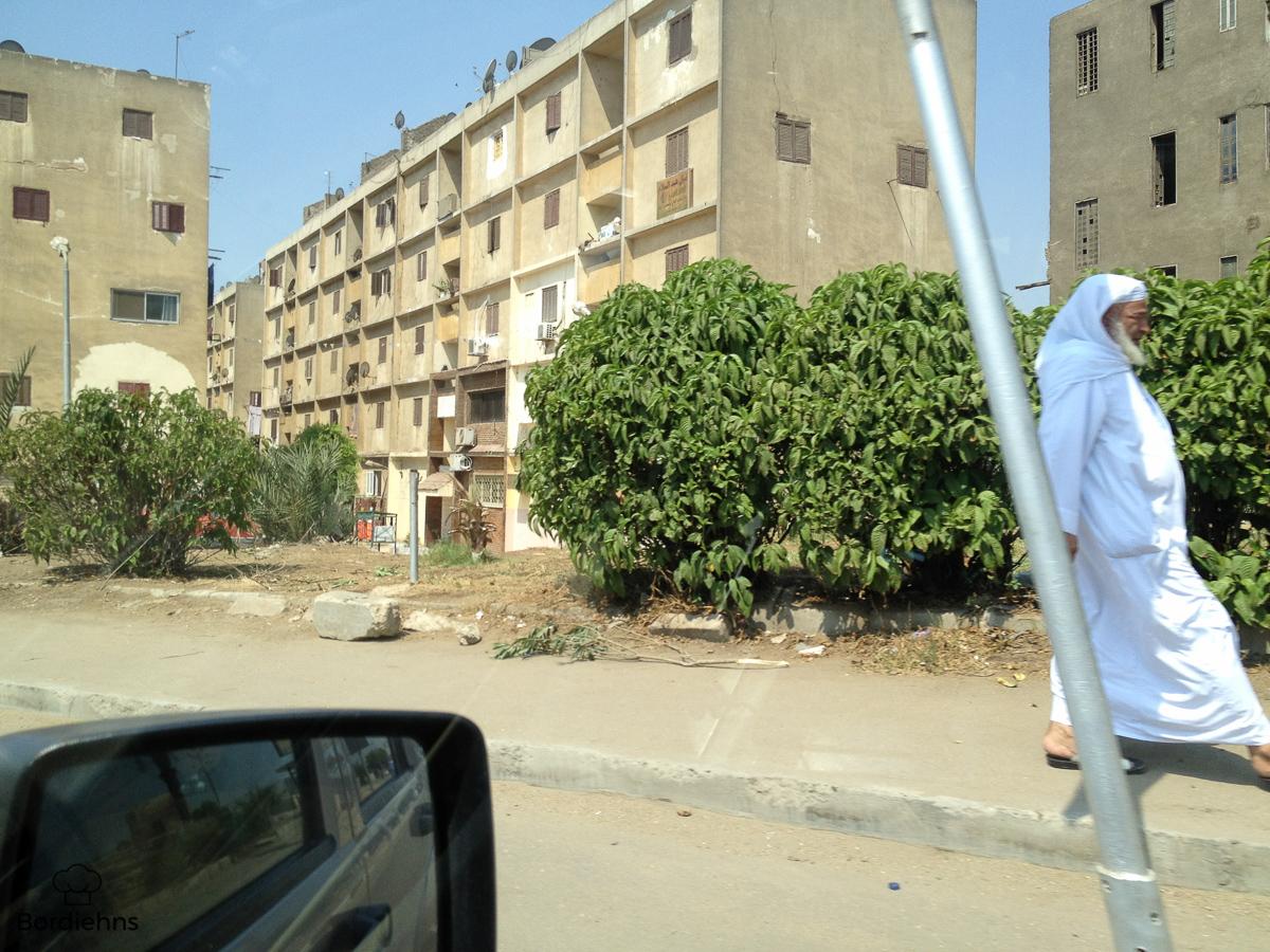Egypt pics-16.jpg