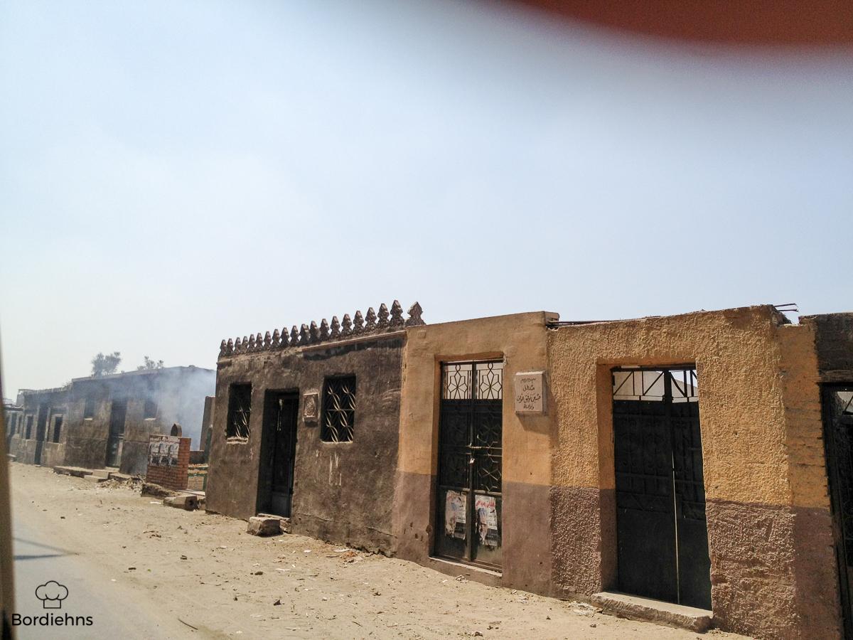 Egypt pics-23.jpg
