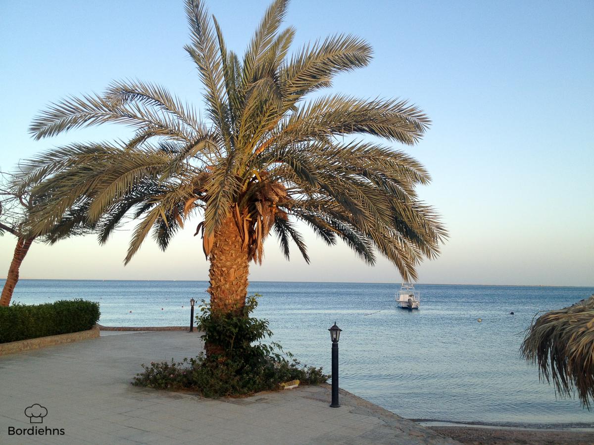 Egypt pics-38.jpg