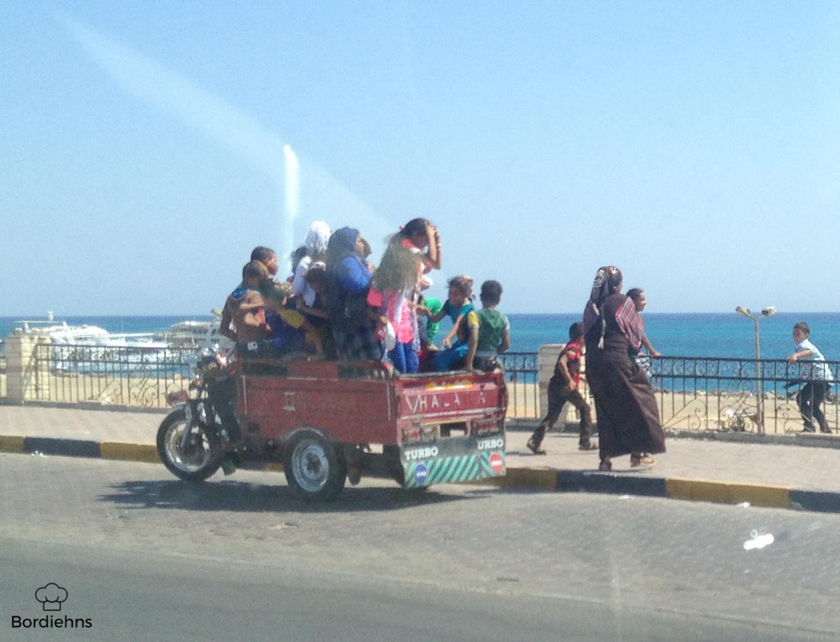 Egypt pics-92.jpg
