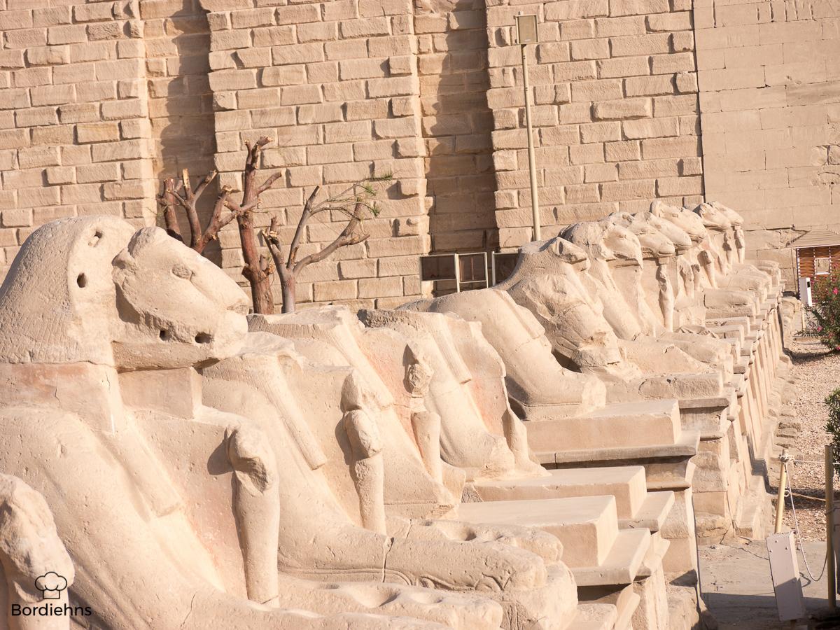 Luxor-2.jpg