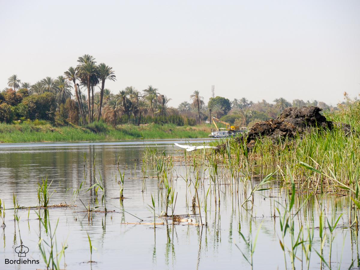 Luxor-111.jpg