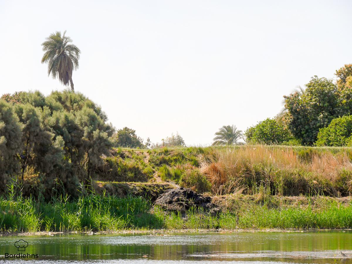 Luxor-119.jpg