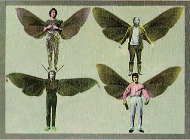 The Mothmen.jpg