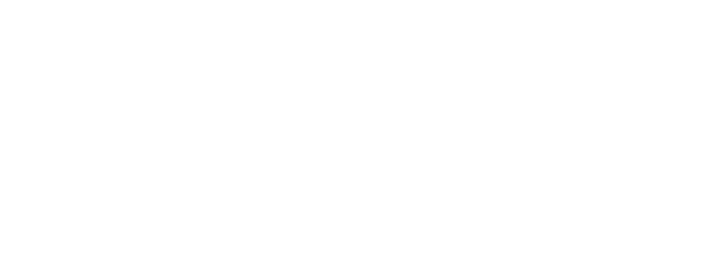Faction_Branding_Full Size White.png