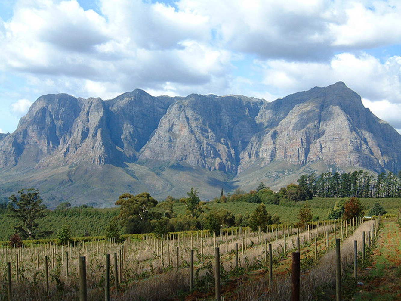 Route_du_vin_Winelands_Tour_à_Stellenbosch.jpg
