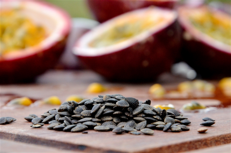 Passionfruit seed