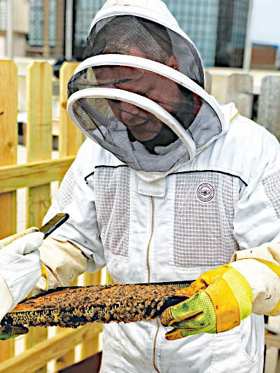 Brian Tending to His Bees