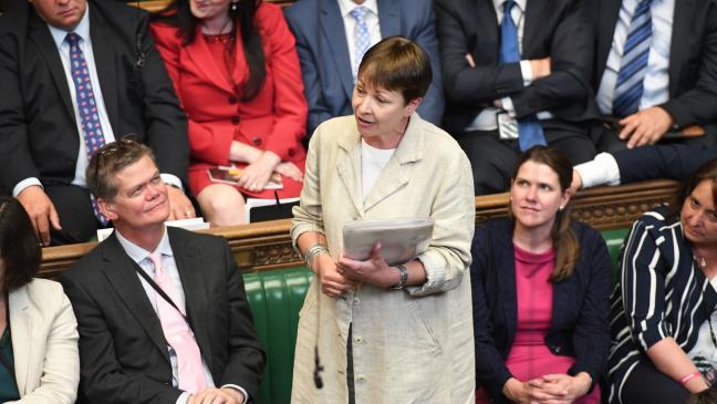 put-animal-sentience-law-into-brexit-legislation-green-mp-tells-ministers-136424376026503901-180116165035.jpg