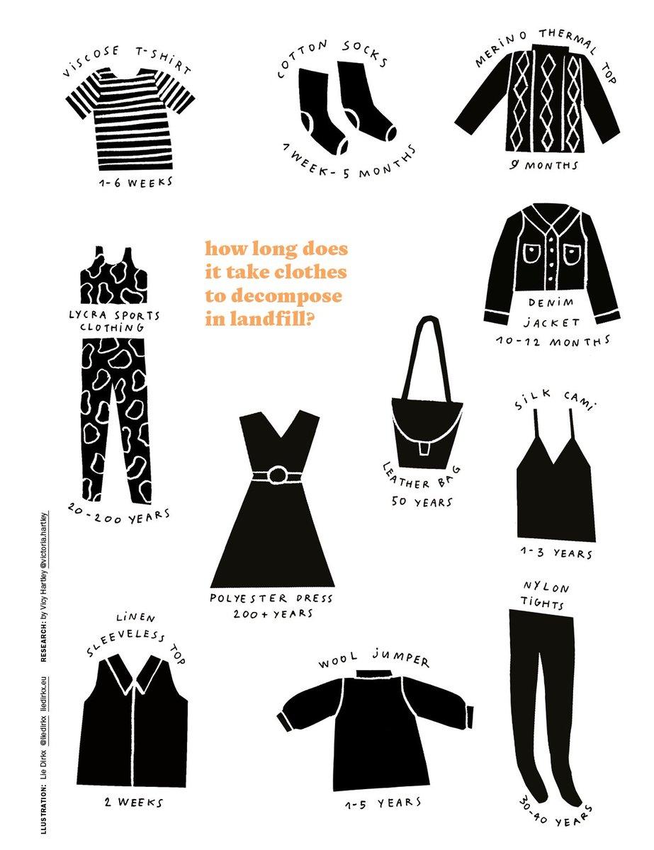 fashion rev.jpg