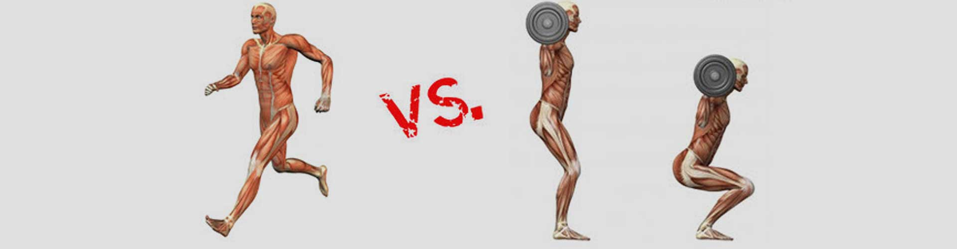 cardio-vs-weight-training-featured1.jpg