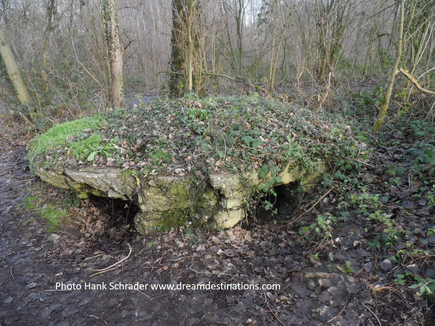 A German Bunker position on Hill 60