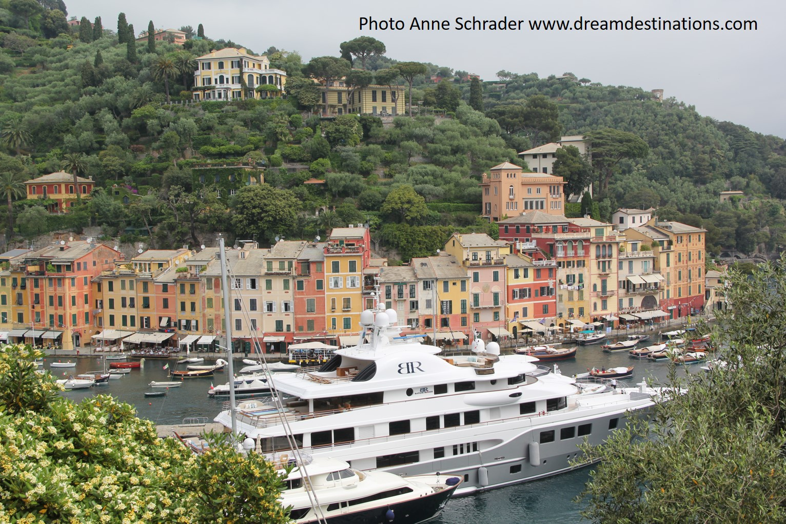 The harbor of Portofino