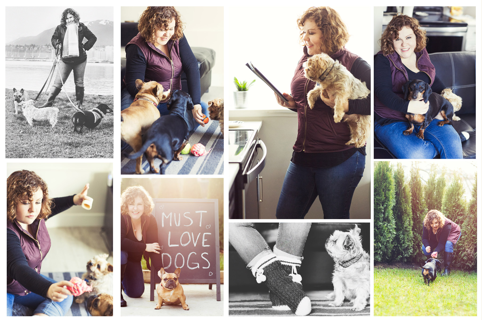 Lindsie and just a few of her extended family of pups that she dog sits and dog walks for.