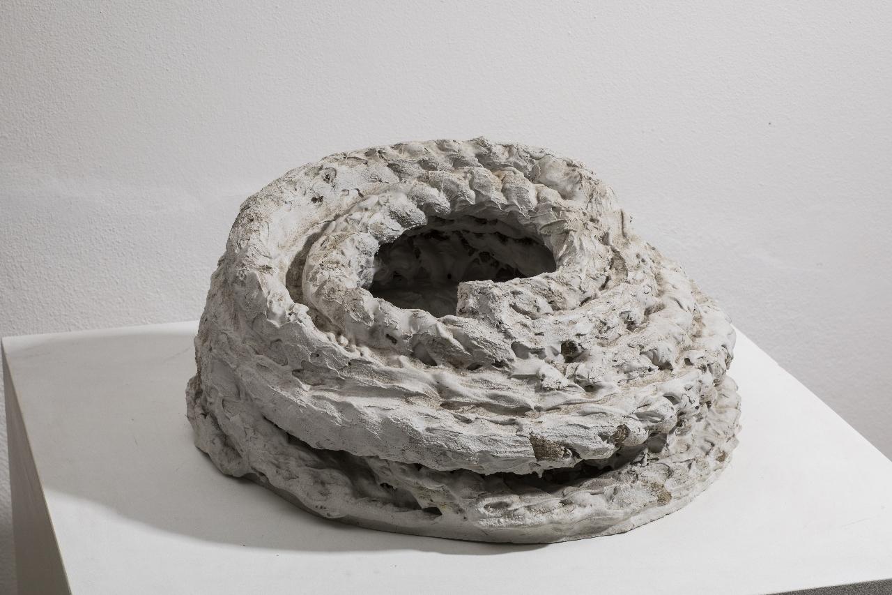 L'ultima corda della Serenissima | The last Serenissima rope