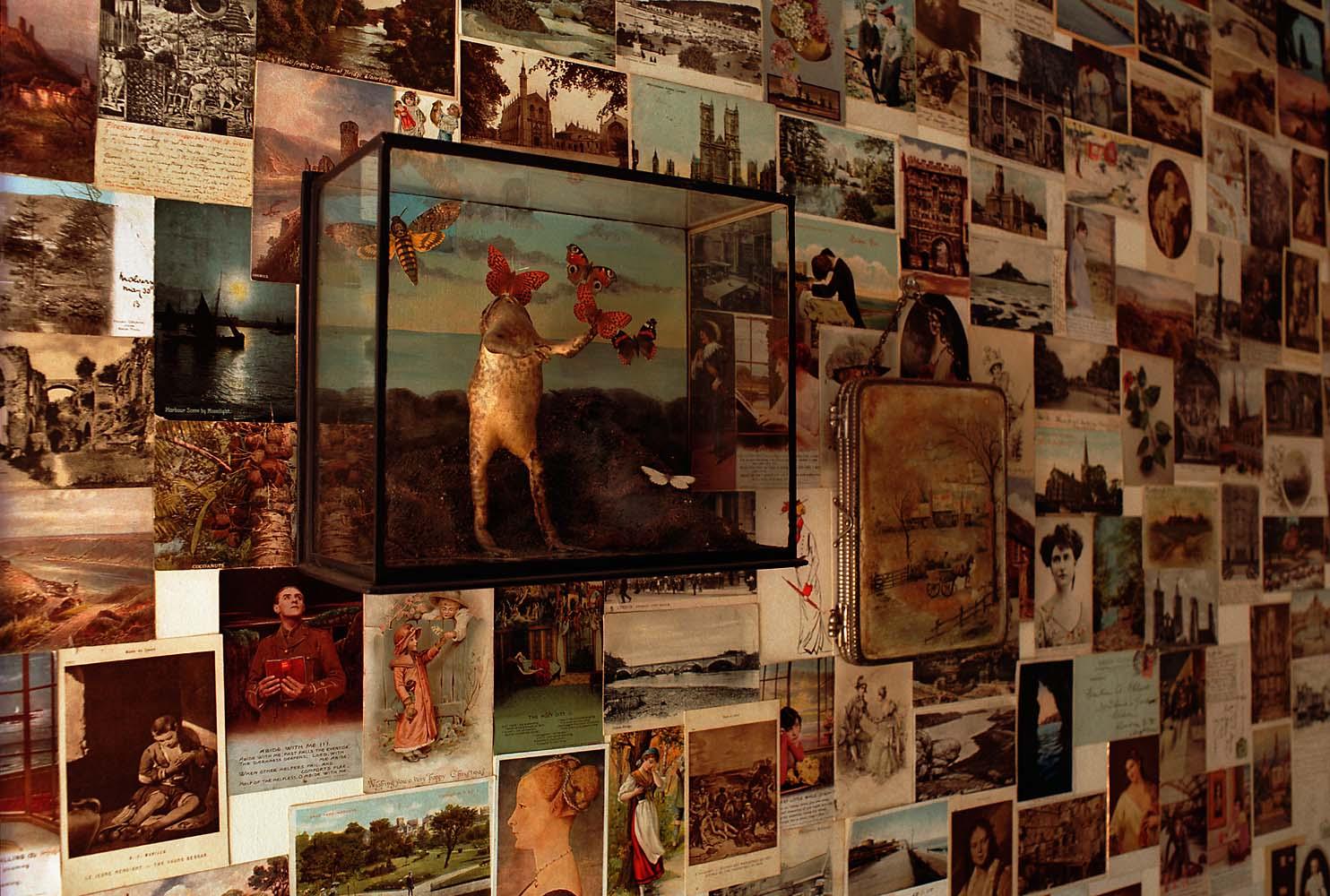frog and postcards•casa vogue