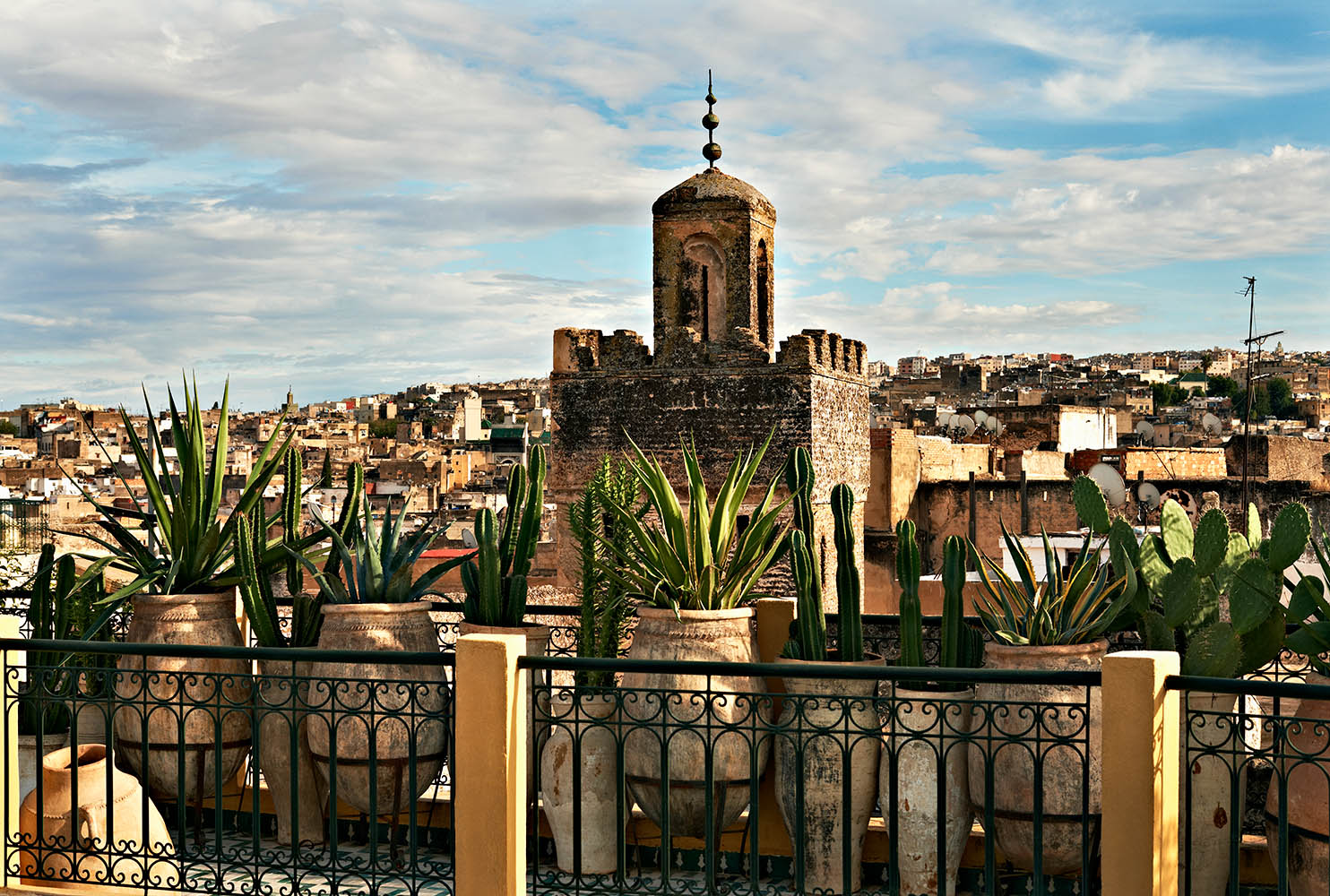 fez rooftop•morocco