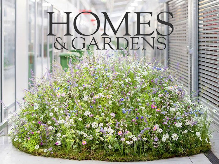 Homes & Gardens - On the fifth day of British Flowers Week 2017, the New Covent Garden Flower Market challenged Carly Rogers to turn the ordinary into the extraordinary, the usual into something rather more unusual, using British-grown wildflowers and foliage...