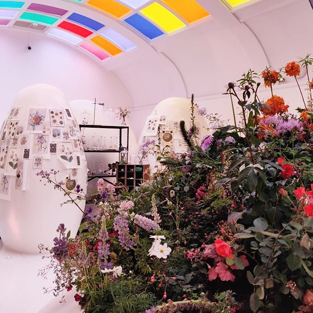 Come and visit the #mayfairflowershow @sketchlondon up until May 27th 💚we've created a pop up fantasy garden and studio inspired by the work of Victorian botanical artist and sci fi author #janeloudon 🌺💫🔭🔬🔮🌱 #sketchinbloom #carlyrogersflowers #garden #flowers #botanicalart #botanicalinstallation #design #interiors #londonflorist #londondesign 📷 repost @p4blo85