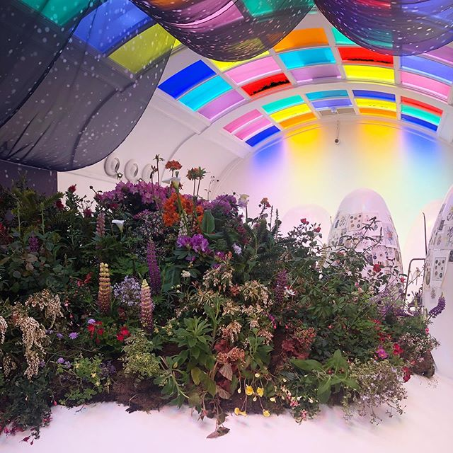 Our #janeloudon garden and studio inspired by her botanical and sci fi writing @sketchlondon till May 27th adorned with a beautiful printed skyscape by the fantastic @insleyandnash 🙌🌸🌒💫#mayfairflowershow #carlyrogersflowers #sketchinbloom #sketchlondon #garden #flowers #design #london #interiors #botanicalinstallation