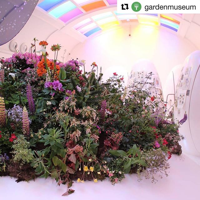 #Repost @gardenmuseum 😘🥳🍃 ・・・ Carly Rogers is the botanical brain behind stunning floral installations at Sketch Mayfair, London Design Week, Conde Nast Traveller and Festival Flora to name a few. With a Master's Degree from the Royal College of Art, Carly's eye for design goes beyond the traditional floral arrangement and tells a skillfully crafted story, combining a passion for flowers with contemporary art and fashion. 🌸🌸🌸 We're thrilled to have @carlyrogersflowers among our florist roster at British Flowers Week – come and see what she's got up her sleeve from 11-16 June, when the Garden Museum will be the latest location to get the Carly Rogers floral treatment.  #BritishFlowersWeek #carlyrogersflowers #garden #flowers #londonflorist #gardenmuseum #botanicalinstallation #nature #design #stilllife