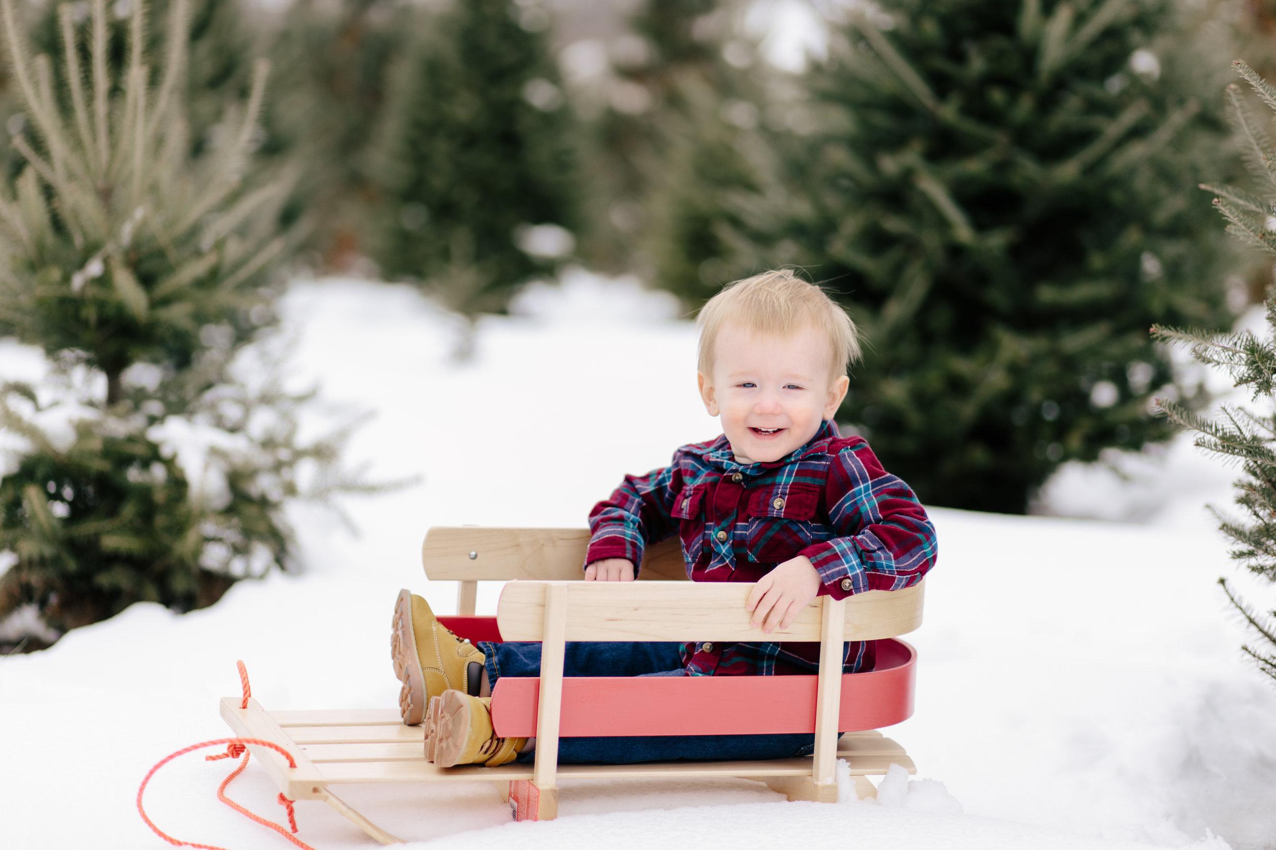 saundra_megan_photography_stout_family_christmas-3.jpg