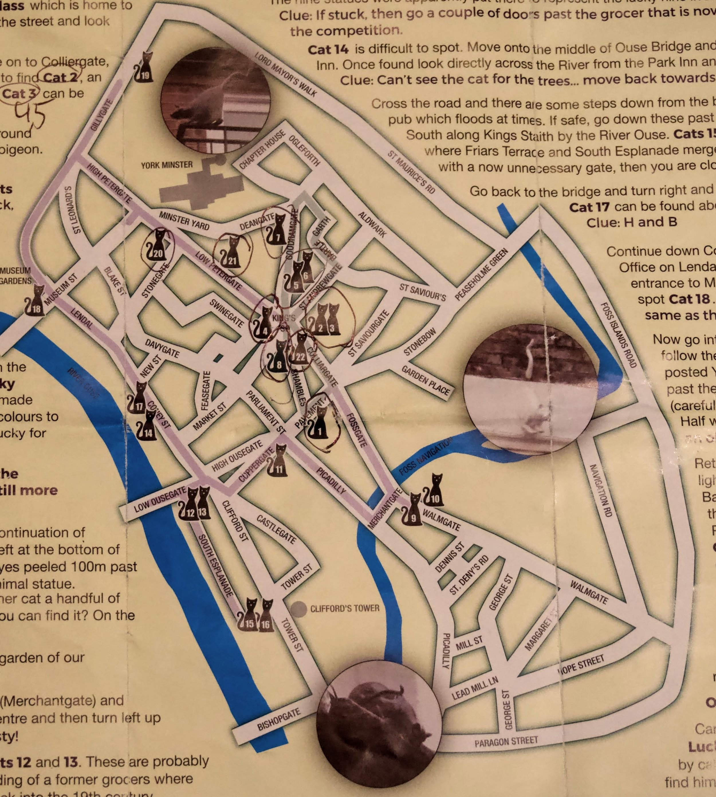 Cat Trail Map
