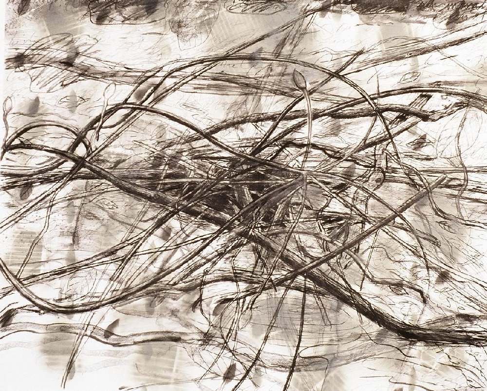 """Untitled, 40"""" x 50"""", charcoal and spray paint on paper, 1997"""